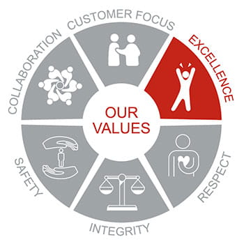 Our Values: Excellence