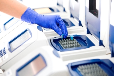 DNA Sequencing Requires Precise Temperature Control for Better Yield and Purity