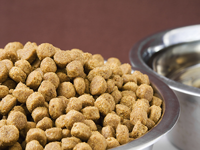 Radiant-Heat Killing of Insect Infestation in Dog Food